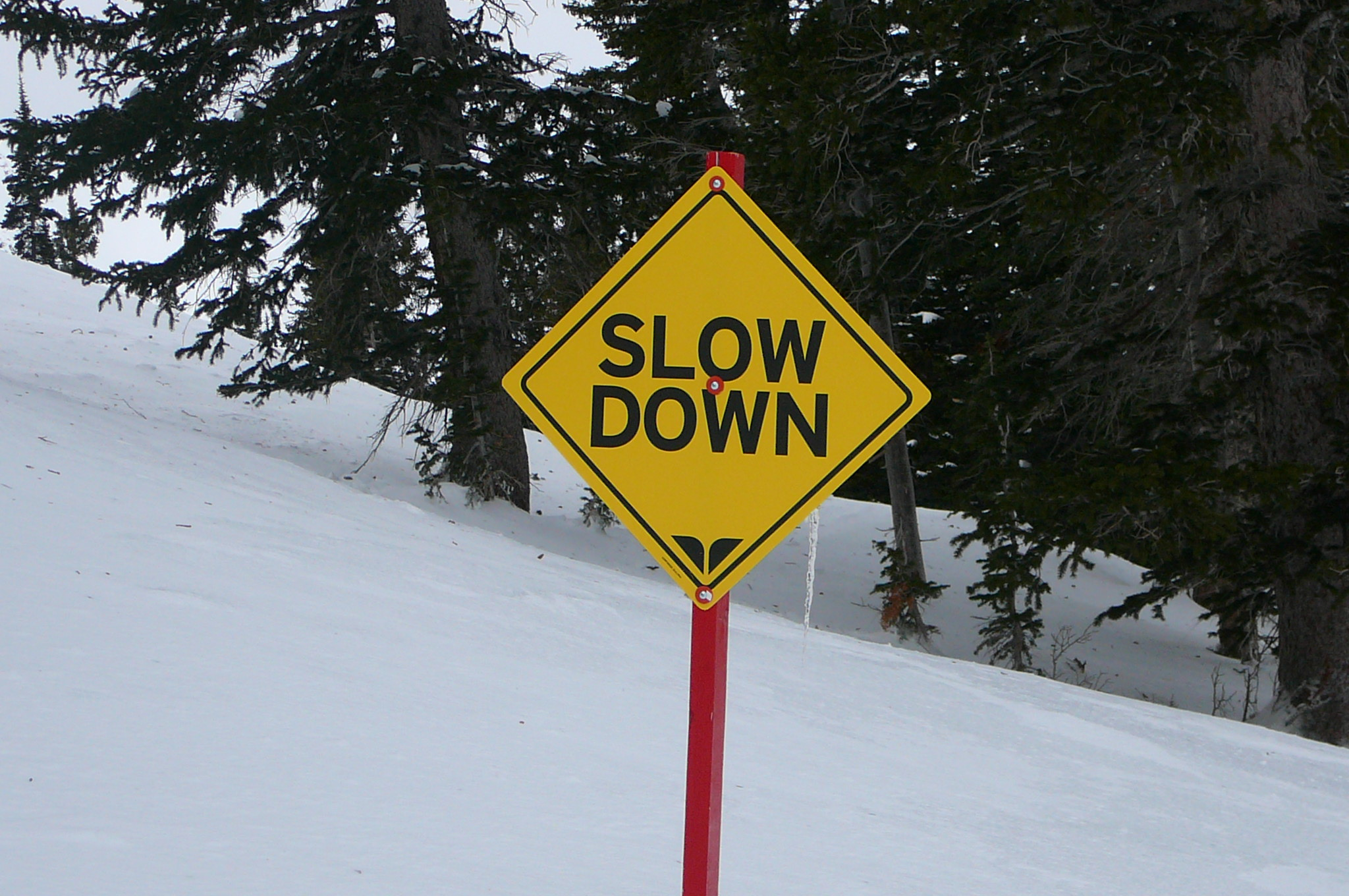 Instructional Ski Trail Sign